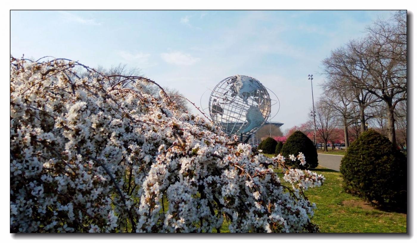 春滿可樂娜公園_圖1-5