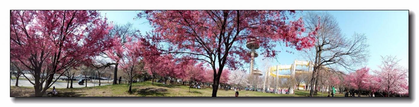 春满可乐娜公园_图1-10
