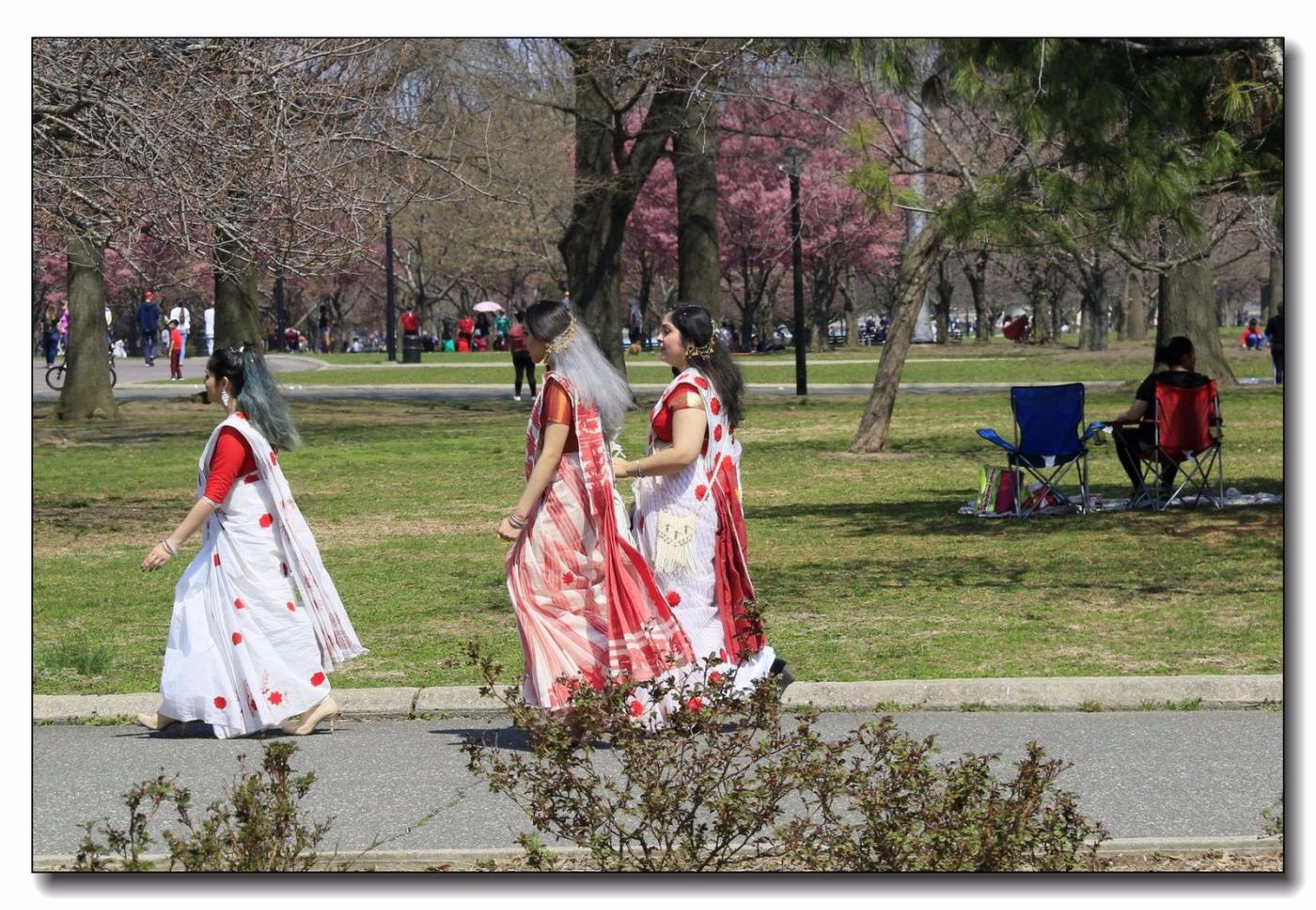 春满可乐娜公园_图1-15