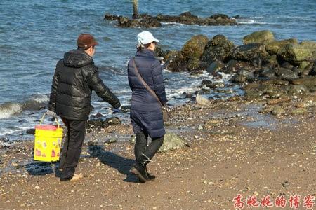 高娓娓:纽约海边公园捡生蚝做海鲜大餐_图1-15