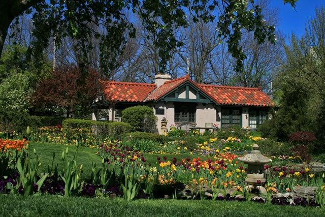 Smith Gardens花园拍郁金香_图1-6