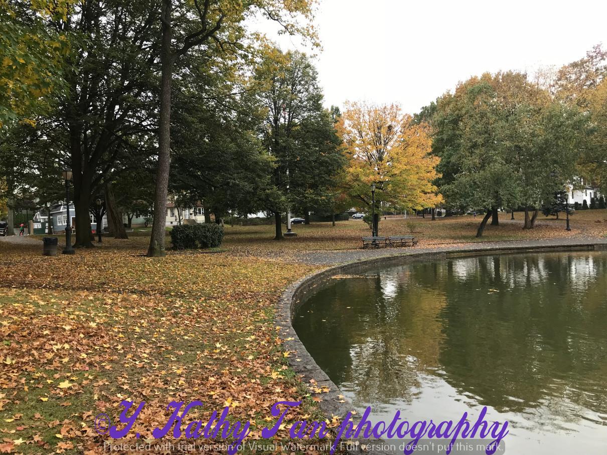 深秋的Bowne 公园_图1-5