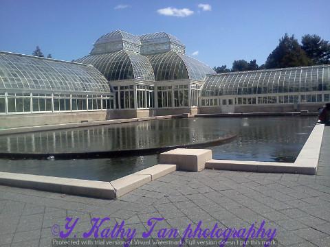 纽约植物公园_图1-1