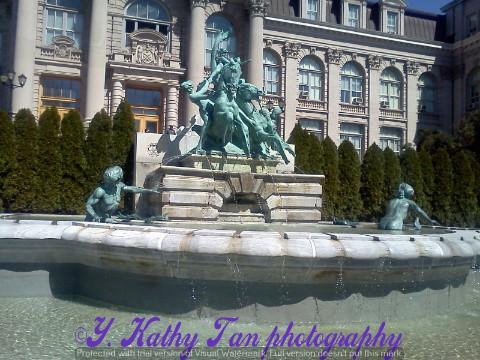 纽约植物公园_图1-4