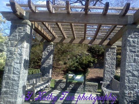 纽约植物公园_图1-3
