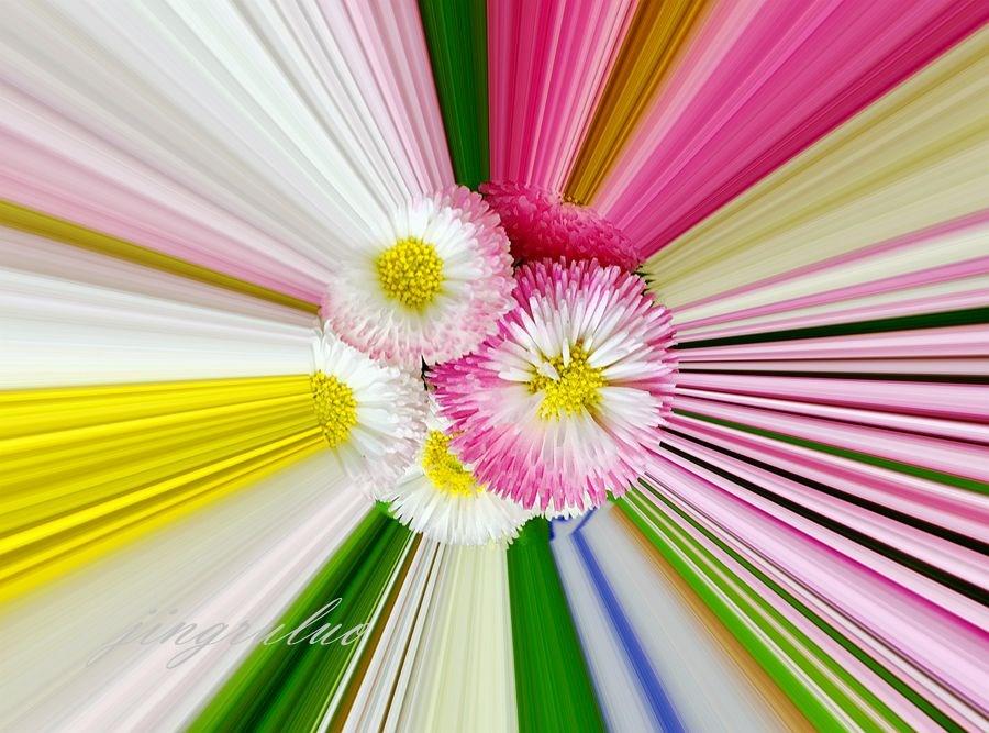 【小虫摄影】春天的颜色_图1-1