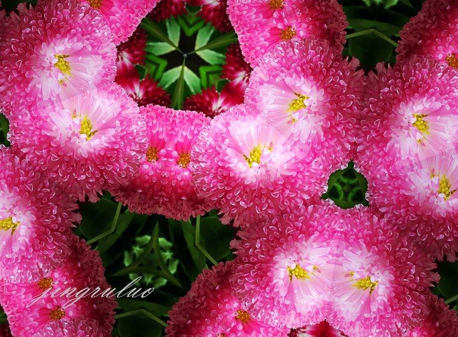 【小虫摄影】春天的颜色_图1-3