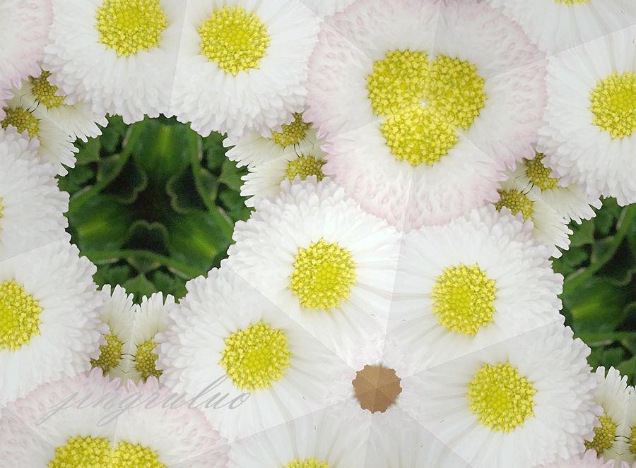 【小虫摄影】春天的颜色_图1-13
