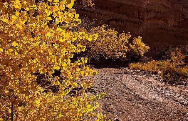 裂缝峡谷_图1-2