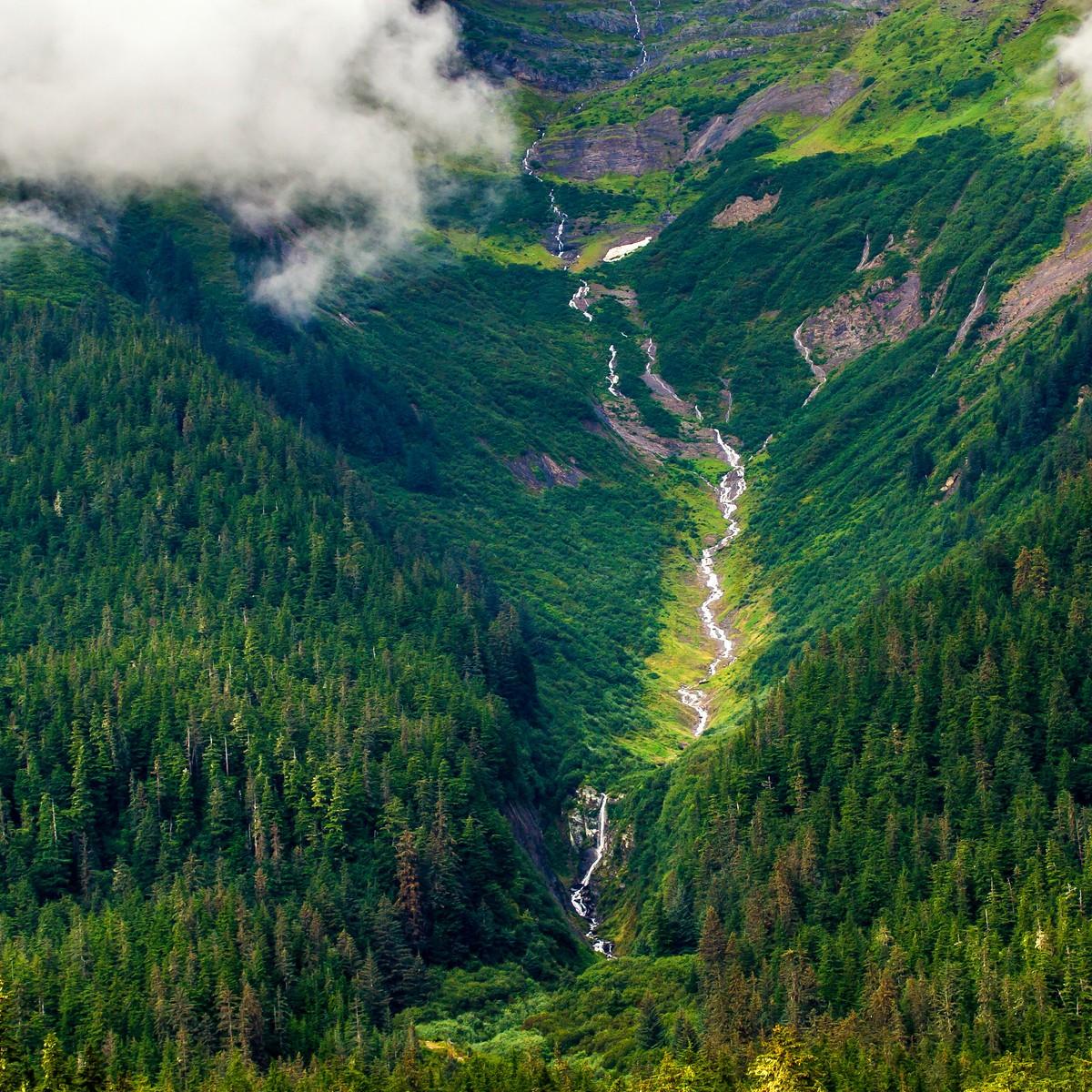 阿拉斯加,大山間的紐帶_圖1-1