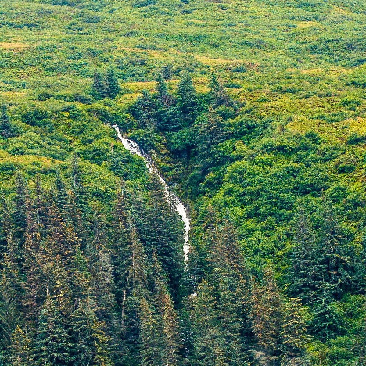 阿拉斯加,大山間的紐帶_圖1-7