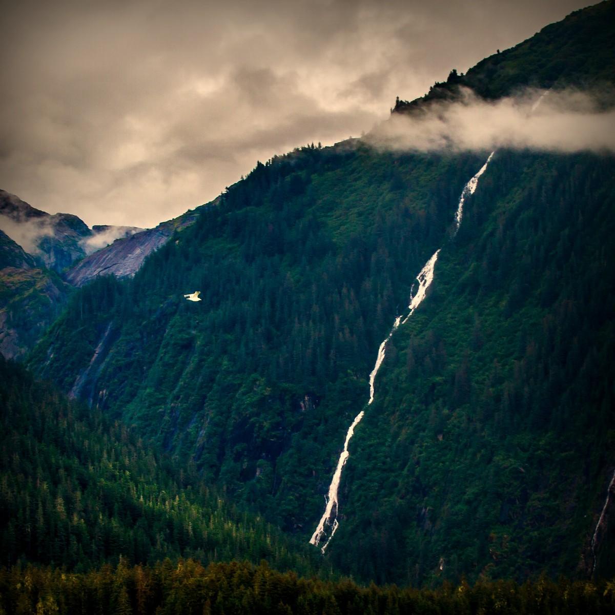 阿拉斯加,大山間的紐帶_圖1-6