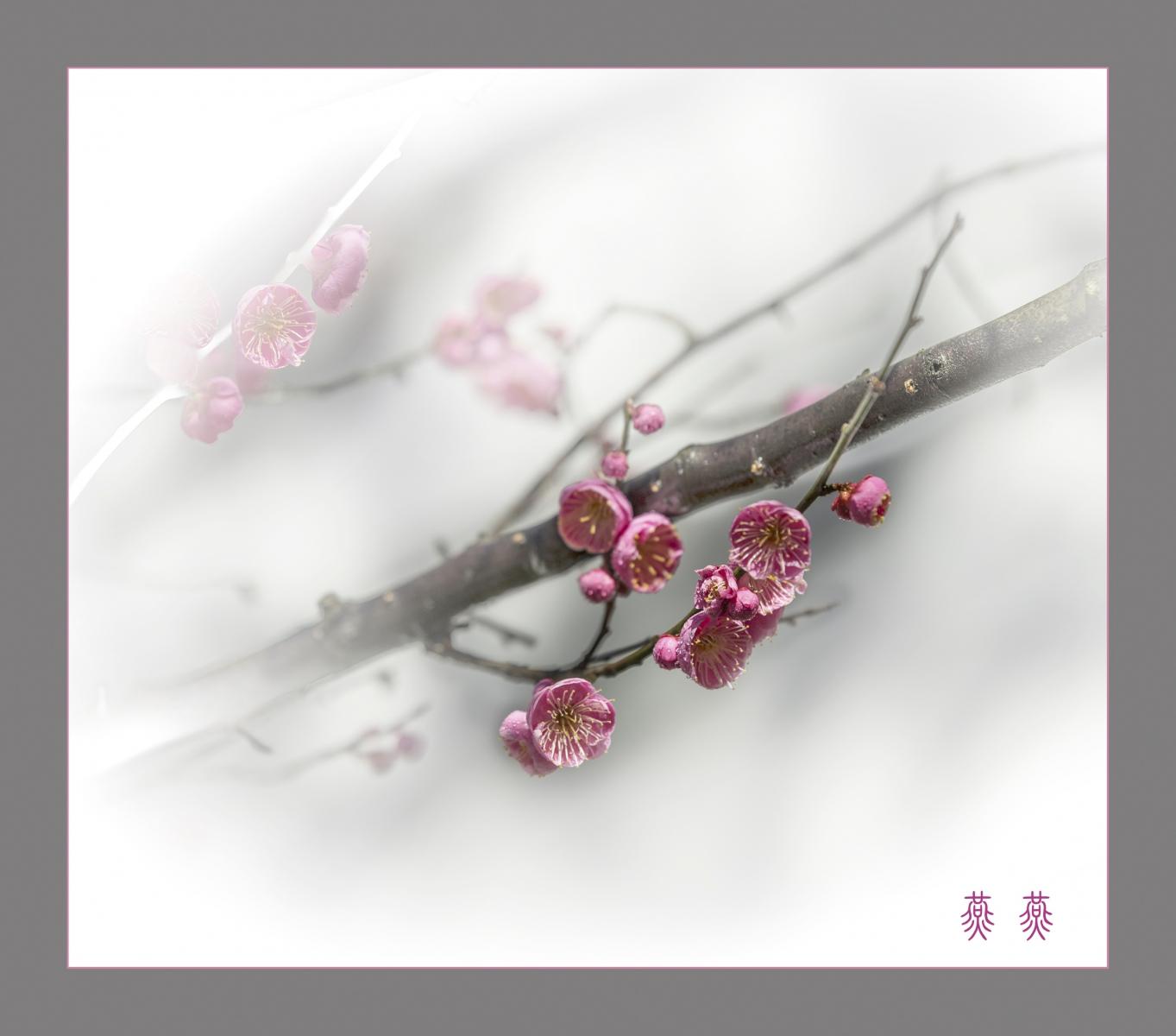 春回大地_图1-2