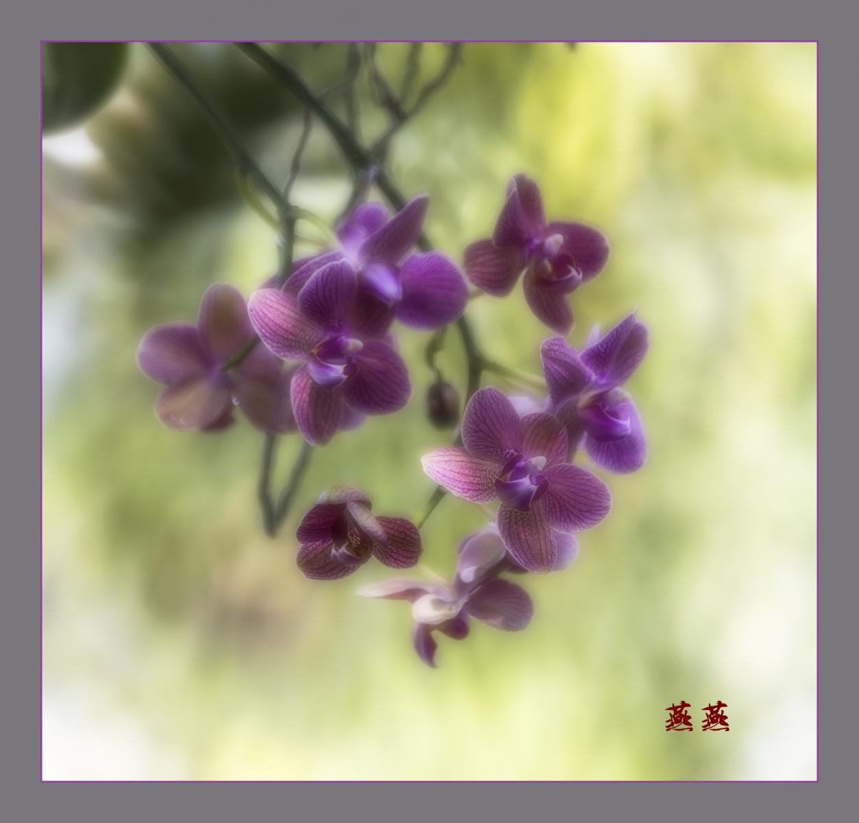 春回大地_图1-3