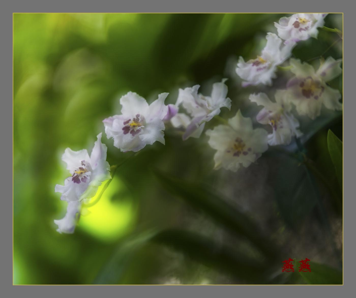 春回大地_图1-4
