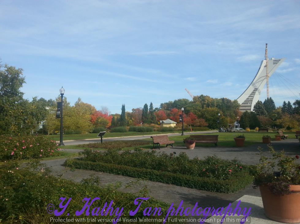 滿地可植物公園 part 1_圖1-16