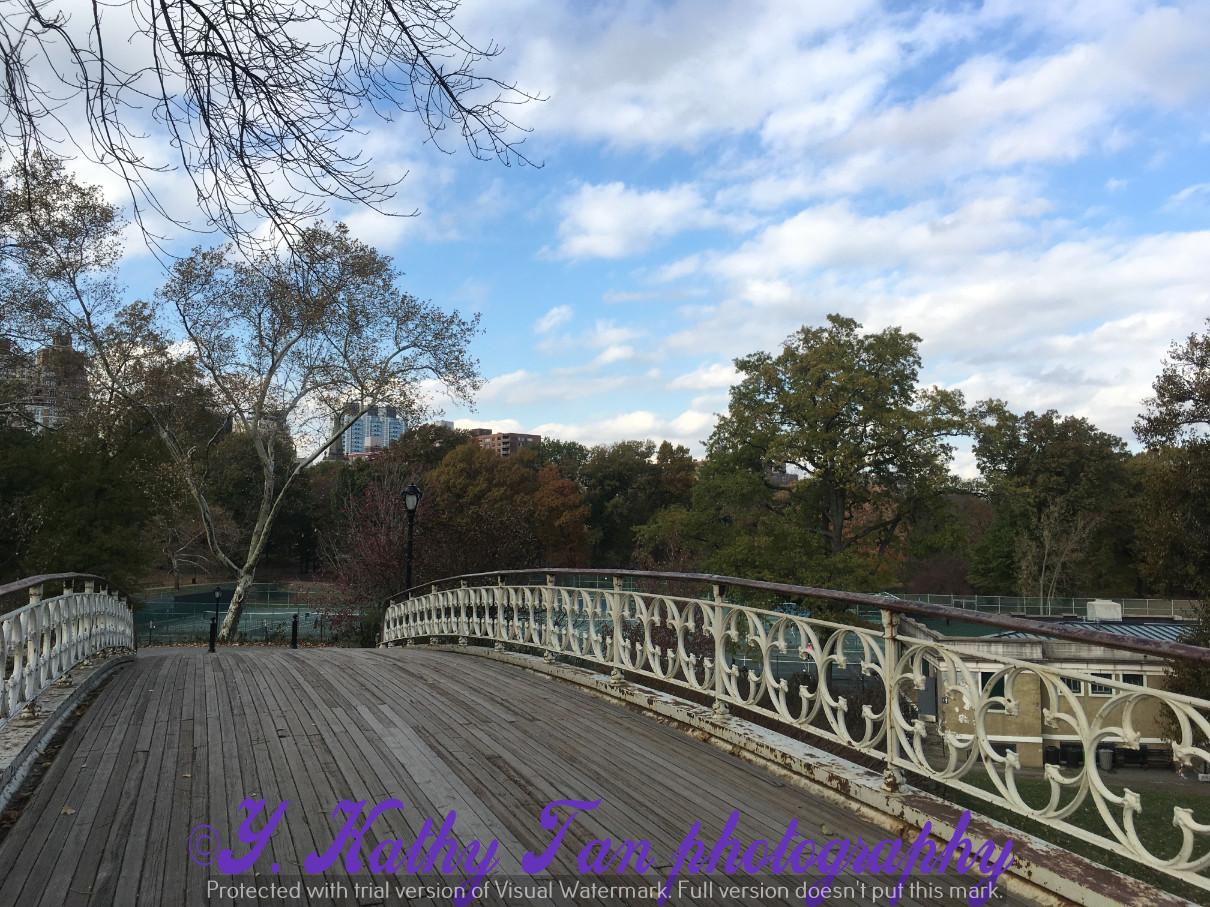 神奇的中央公園秋季_圖1-8