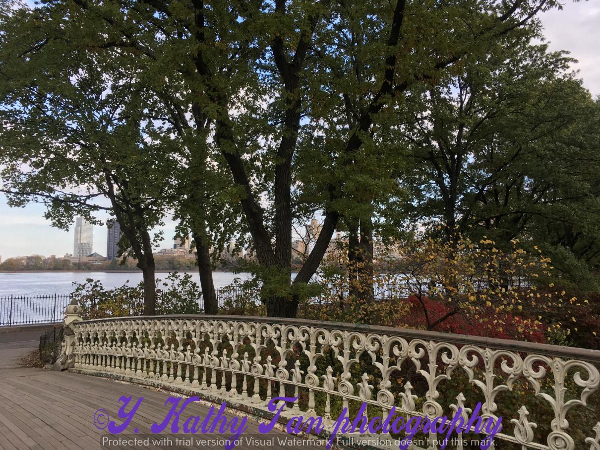 神奇的中央公園秋季_圖1-10