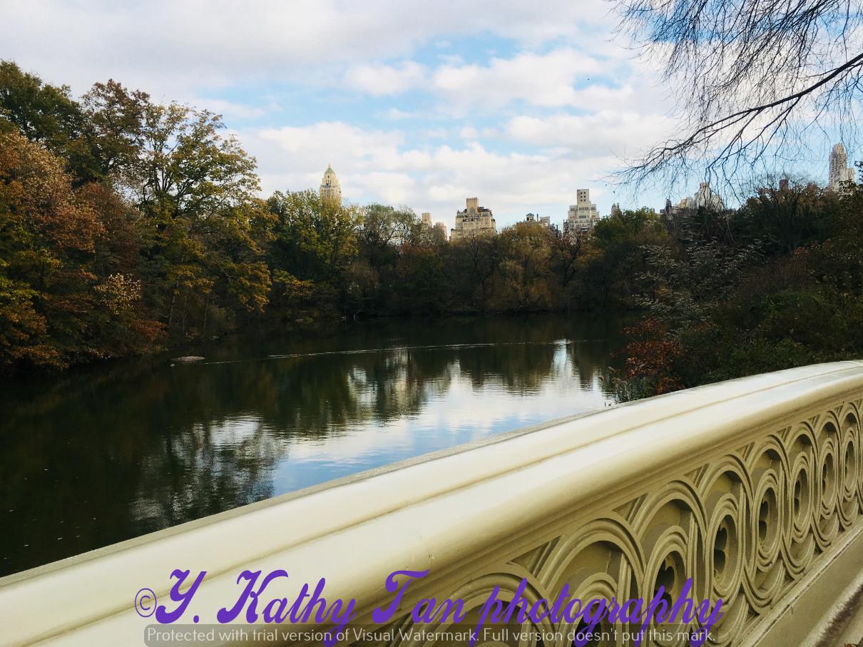 神奇的中央公園秋季_圖1-15