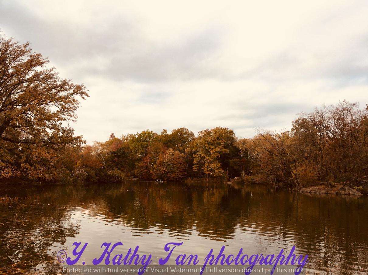 神奇的中央公園秋季_圖1-14