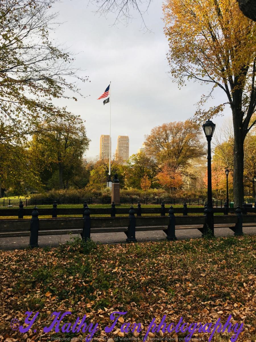 神奇的中央公園秋季_圖1-17