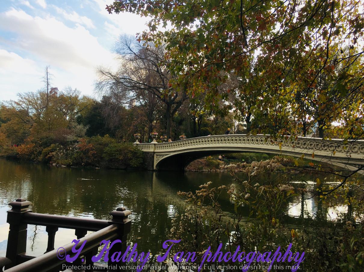 神奇的中央公園秋季_圖1-16