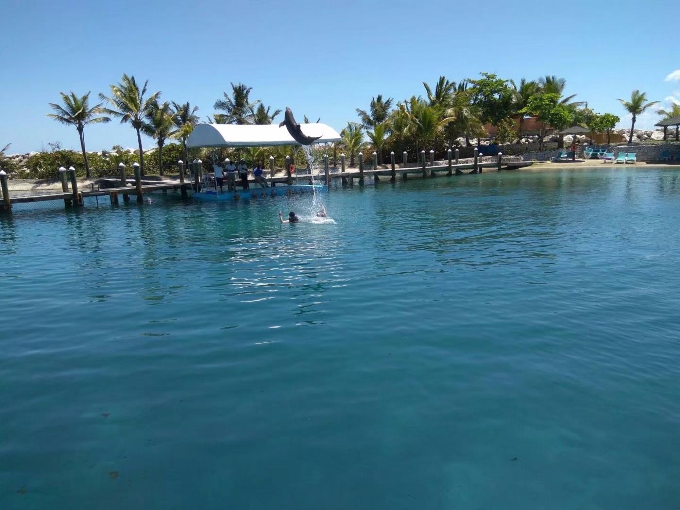 多米尼加有个琥珀湾(图)_图1-9
