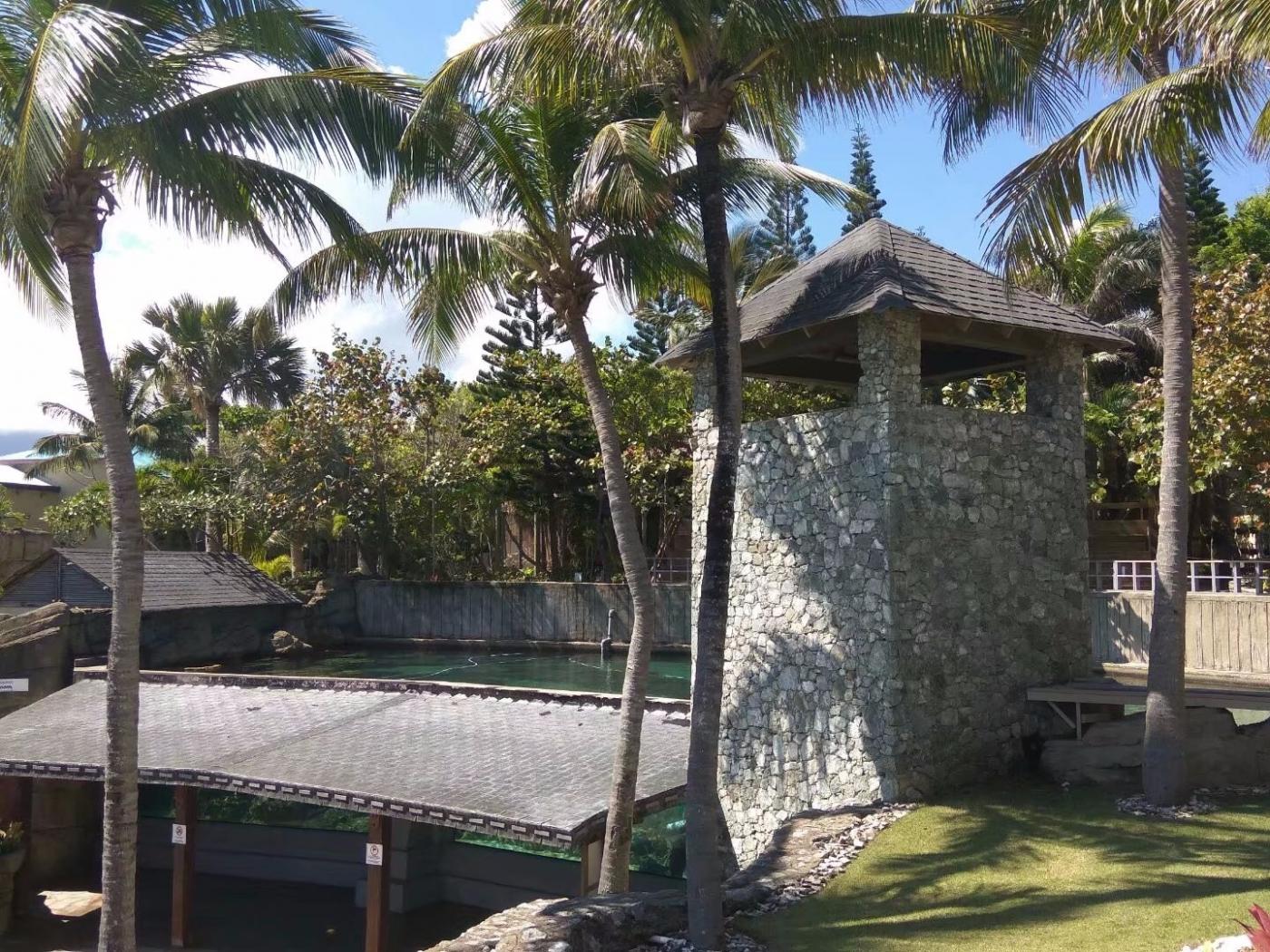 多米尼加有个琥珀湾(图)_图1-16