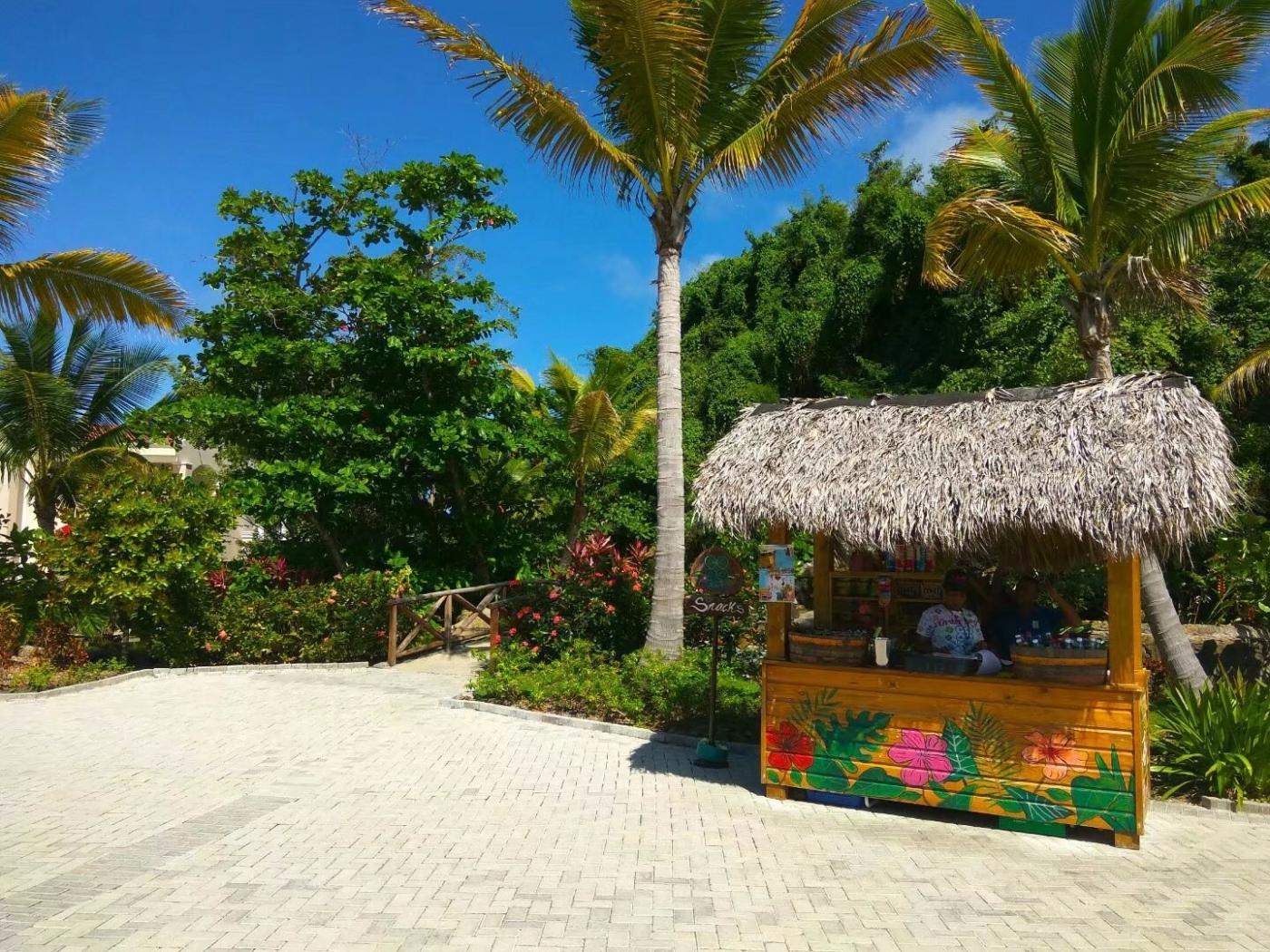 多米尼加有个琥珀湾(图)_图1-18