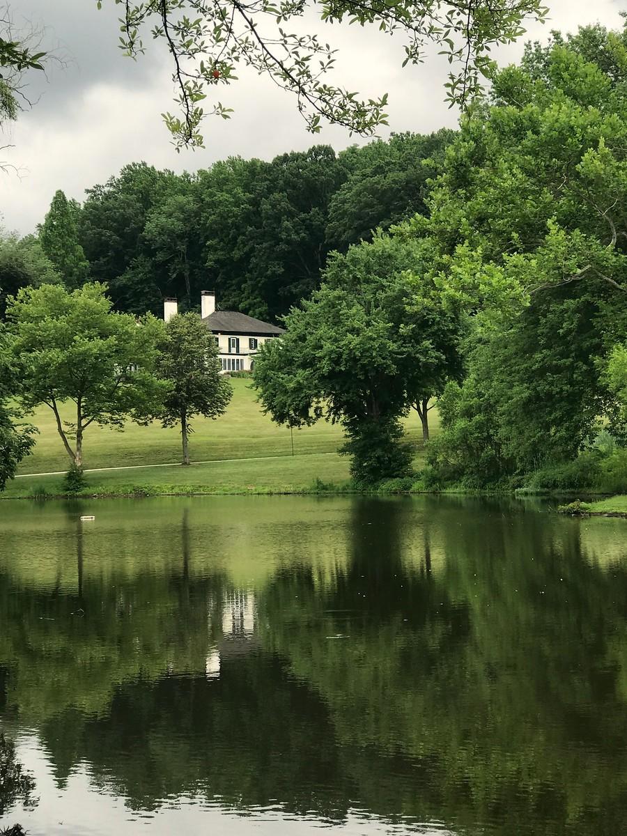 湖邊的景,樹邊的情_圖1-9