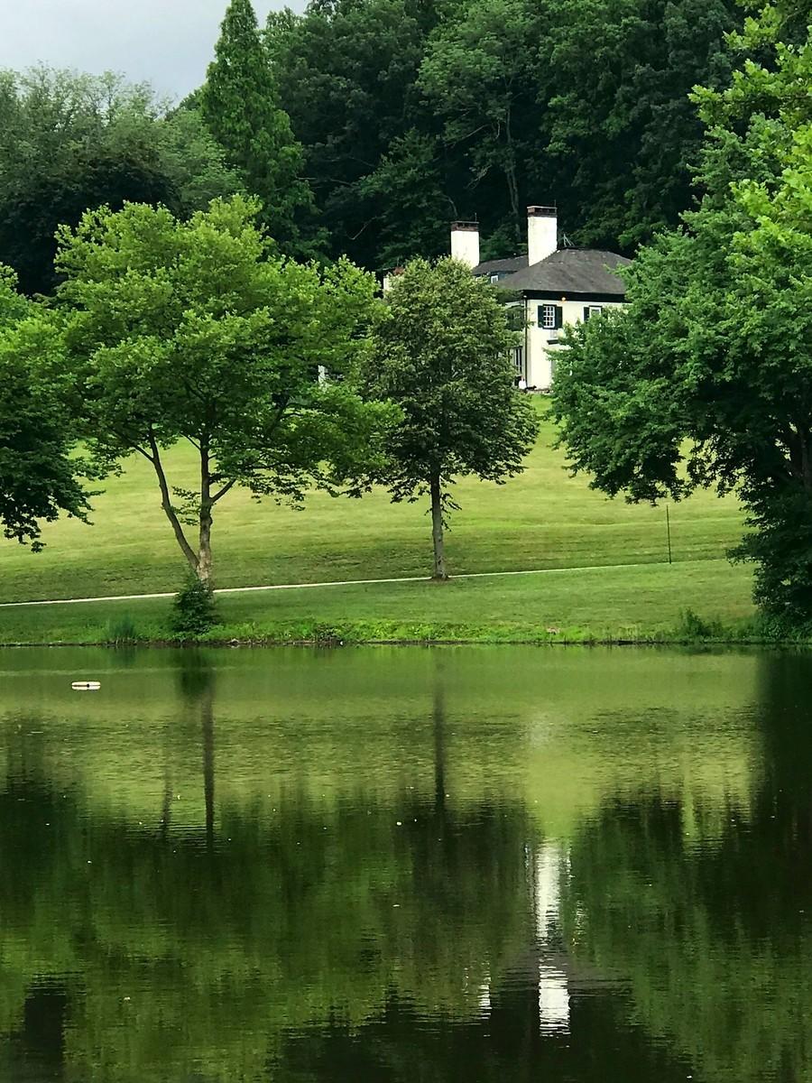 湖邊的景,樹邊的情_圖1-5