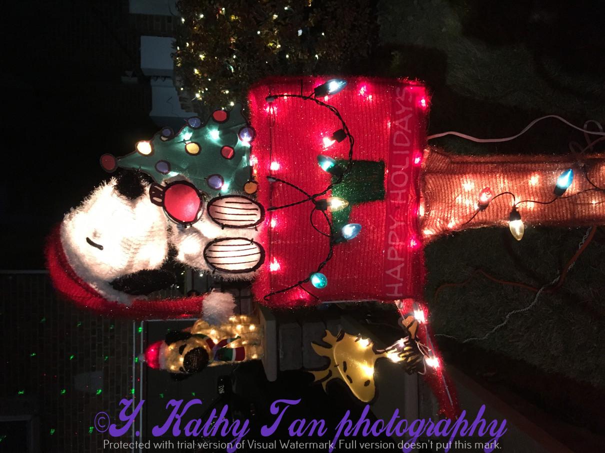 2017聖誕街燈_圖1-1