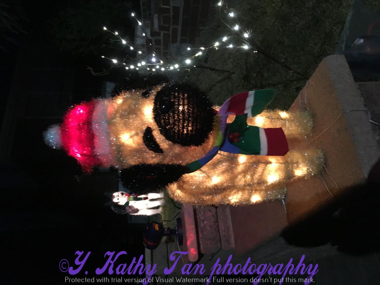 2017聖誕街燈_圖1-2