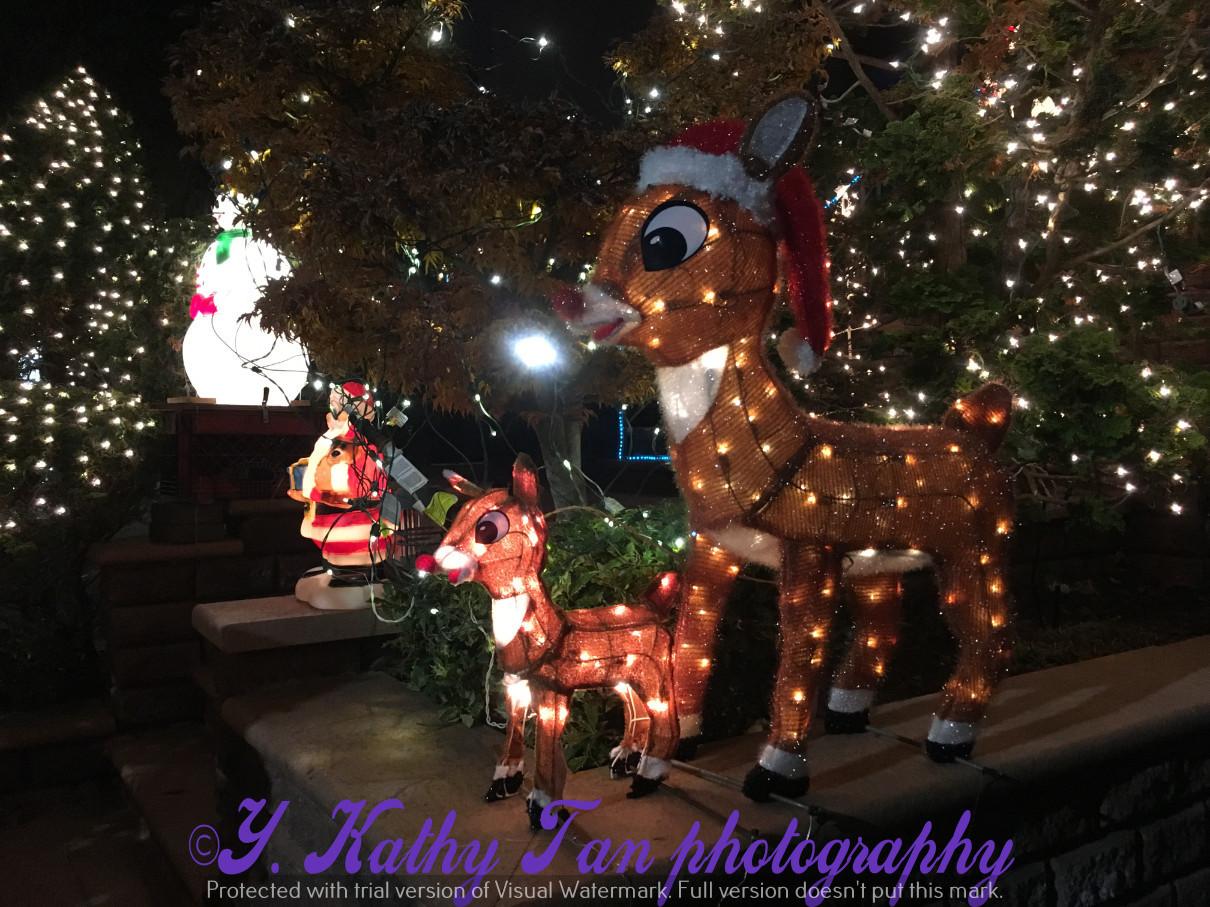 2017聖誕街燈_圖1-3