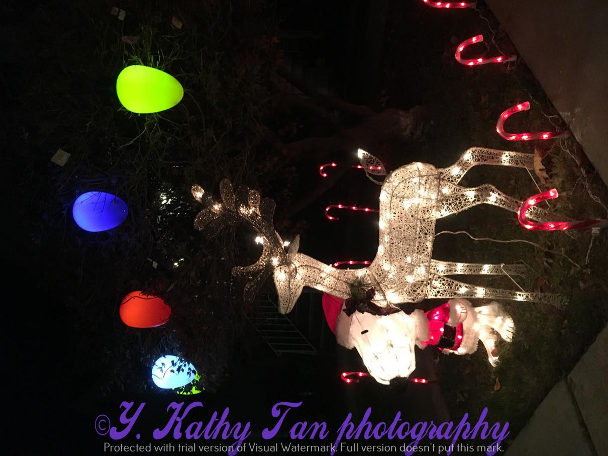 2017聖誕街燈_圖1-6