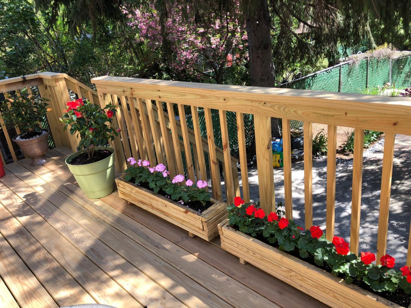 【田螺隨拍】分享去THE HOME DEPOT紅地鋪買花的經驗_圖1-6