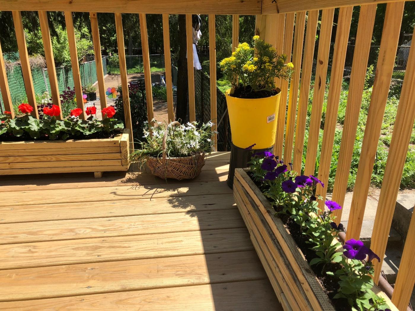 【田螺随拍】分享去THE HOME DEPOT红地铺买花的经验_图1-10