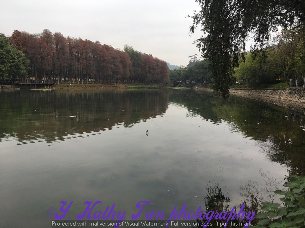 廣州麓湖公園_圖1-5