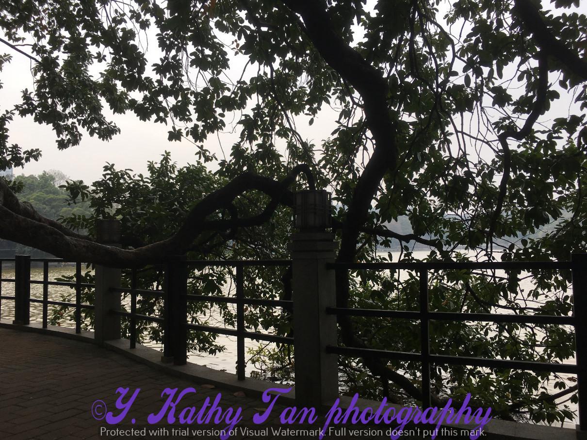 廣州麓湖公園_圖1-7