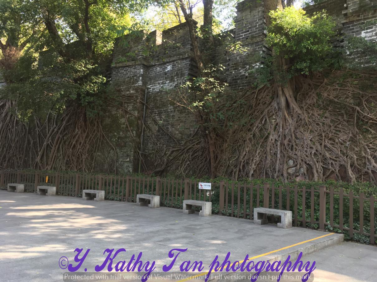 越秀公园_图1-3