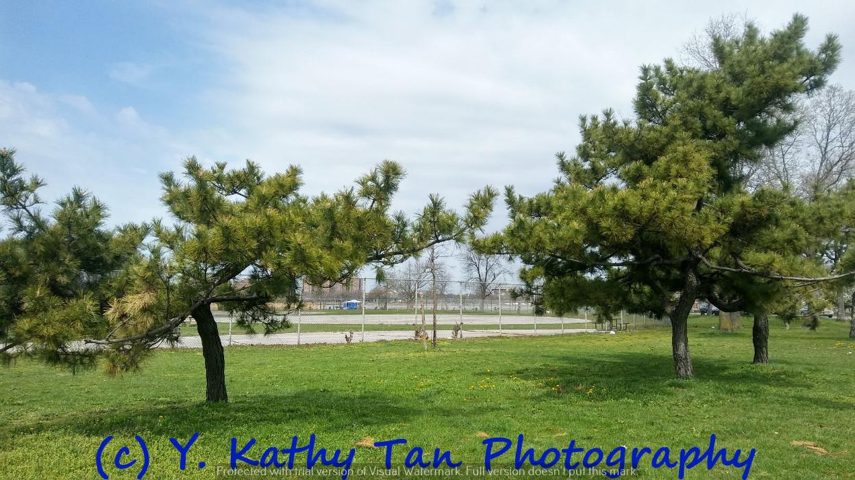 Fresh Meadows 可乐娜公园_图1-5
