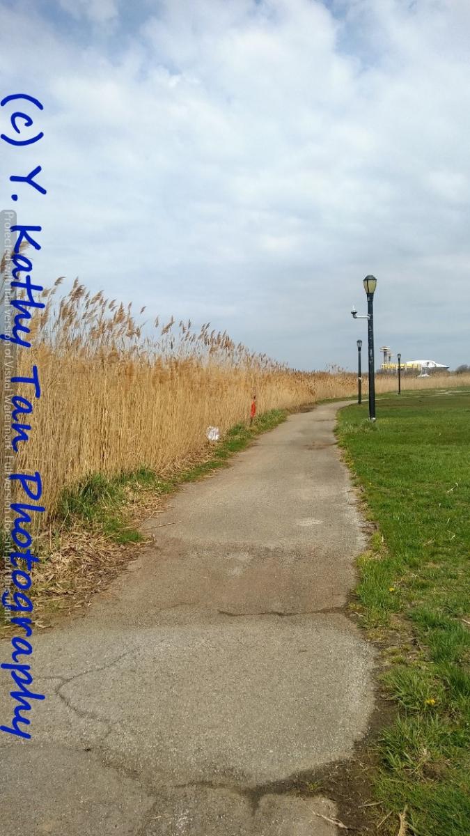 Fresh Meadows 可乐娜公园_图1-6