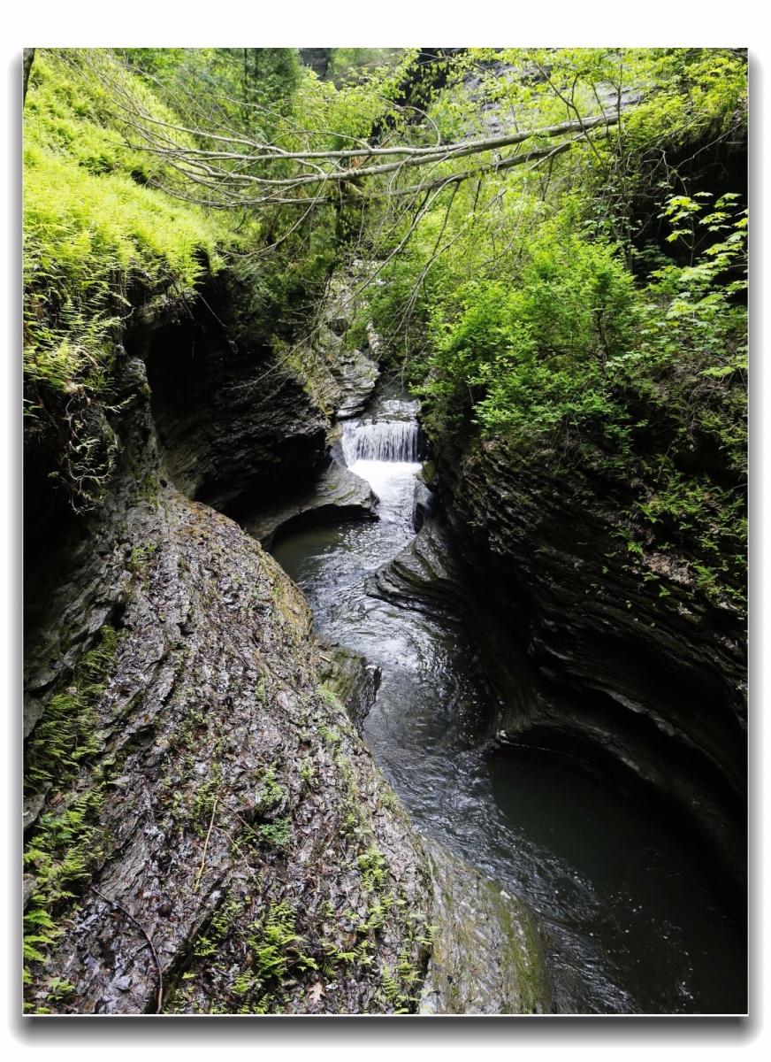 沃特金斯峡谷州立公园近影_图1-15