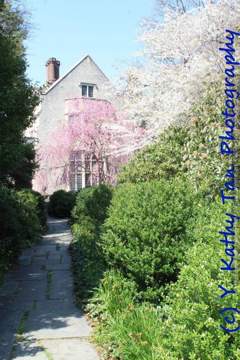 春游Planting Field Arboretum_图1-4