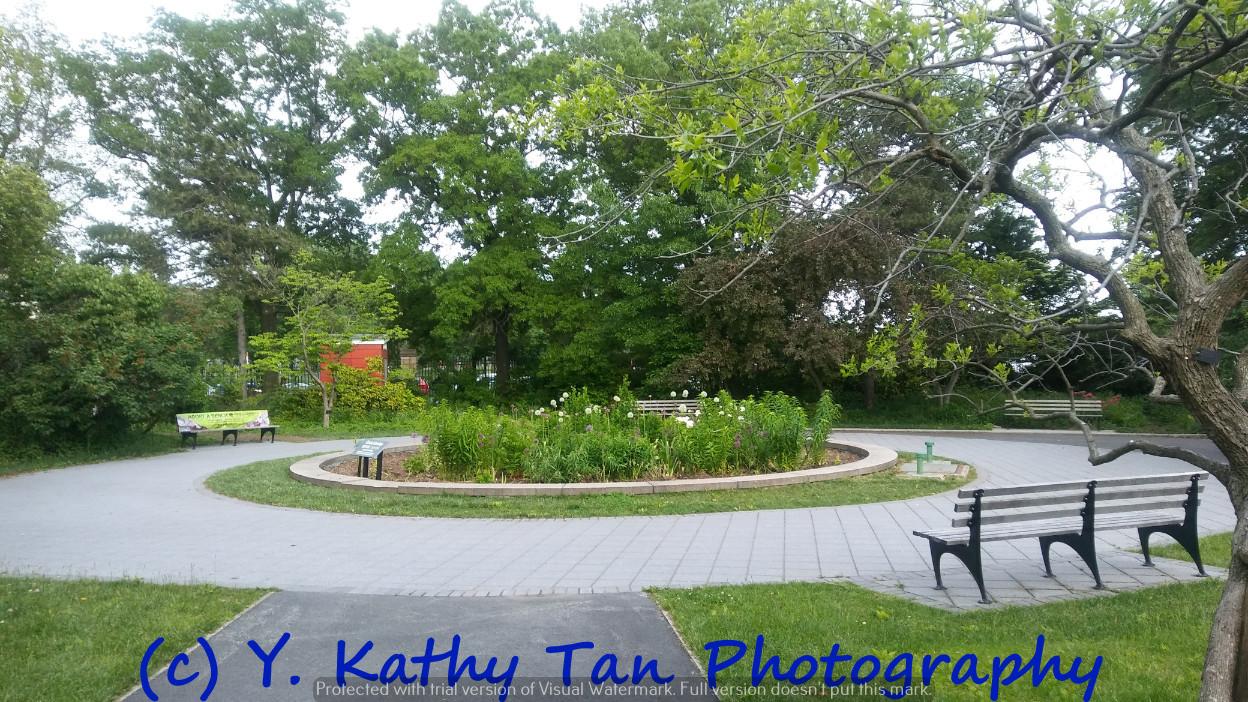 夏游Queens Botanical Garden_图1-3