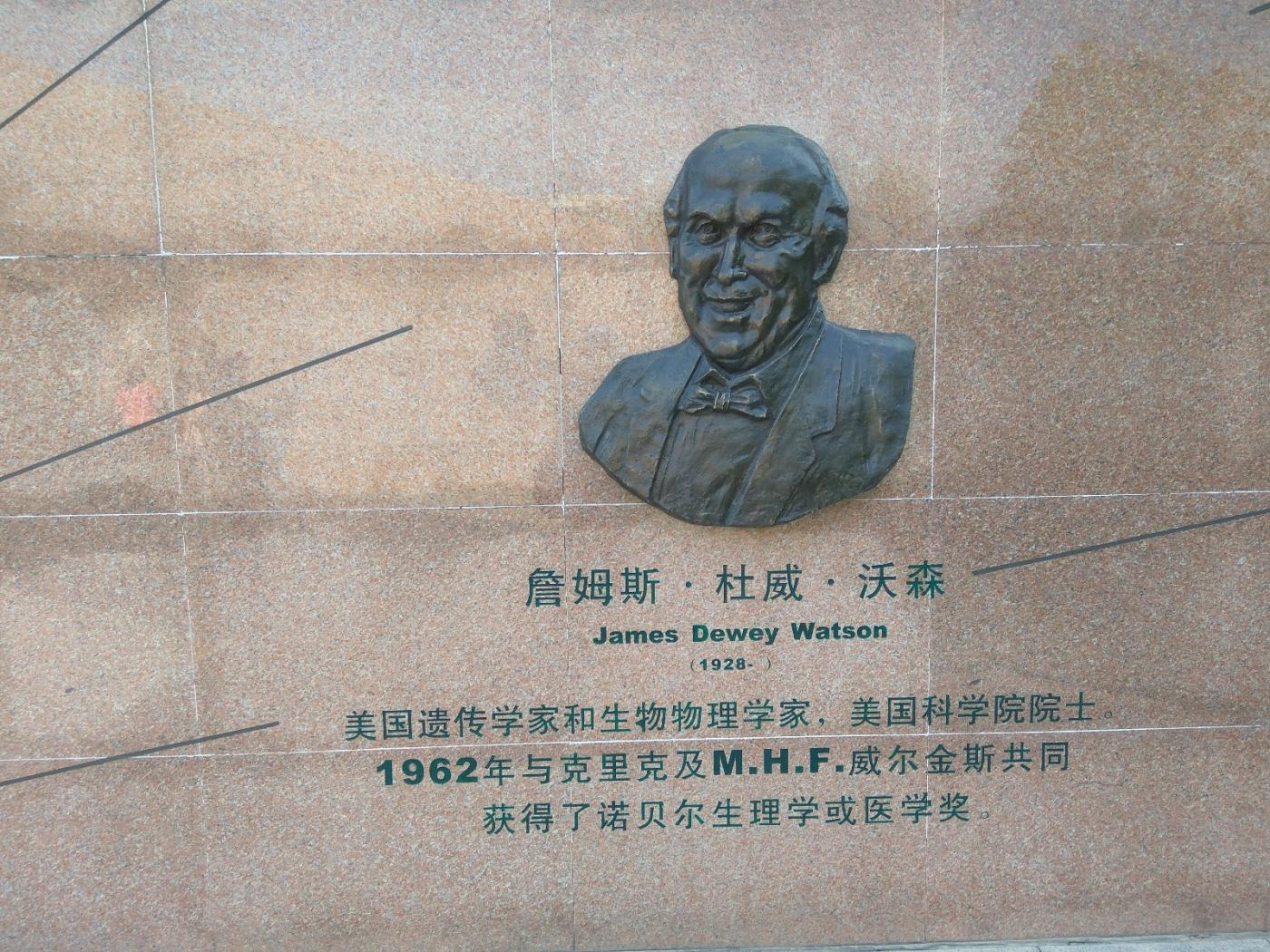 群雕:中外医学大师(图)_图1-19
