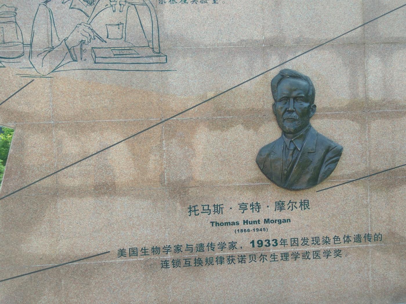 群雕:中外医学大师(图)_图1-21