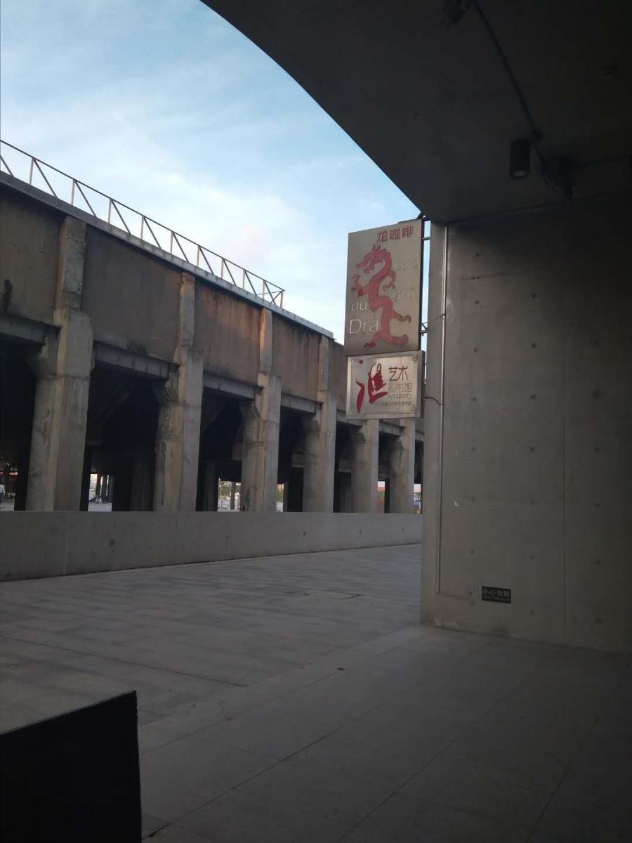上海黄浦江西岸:龙美术馆_图1-4