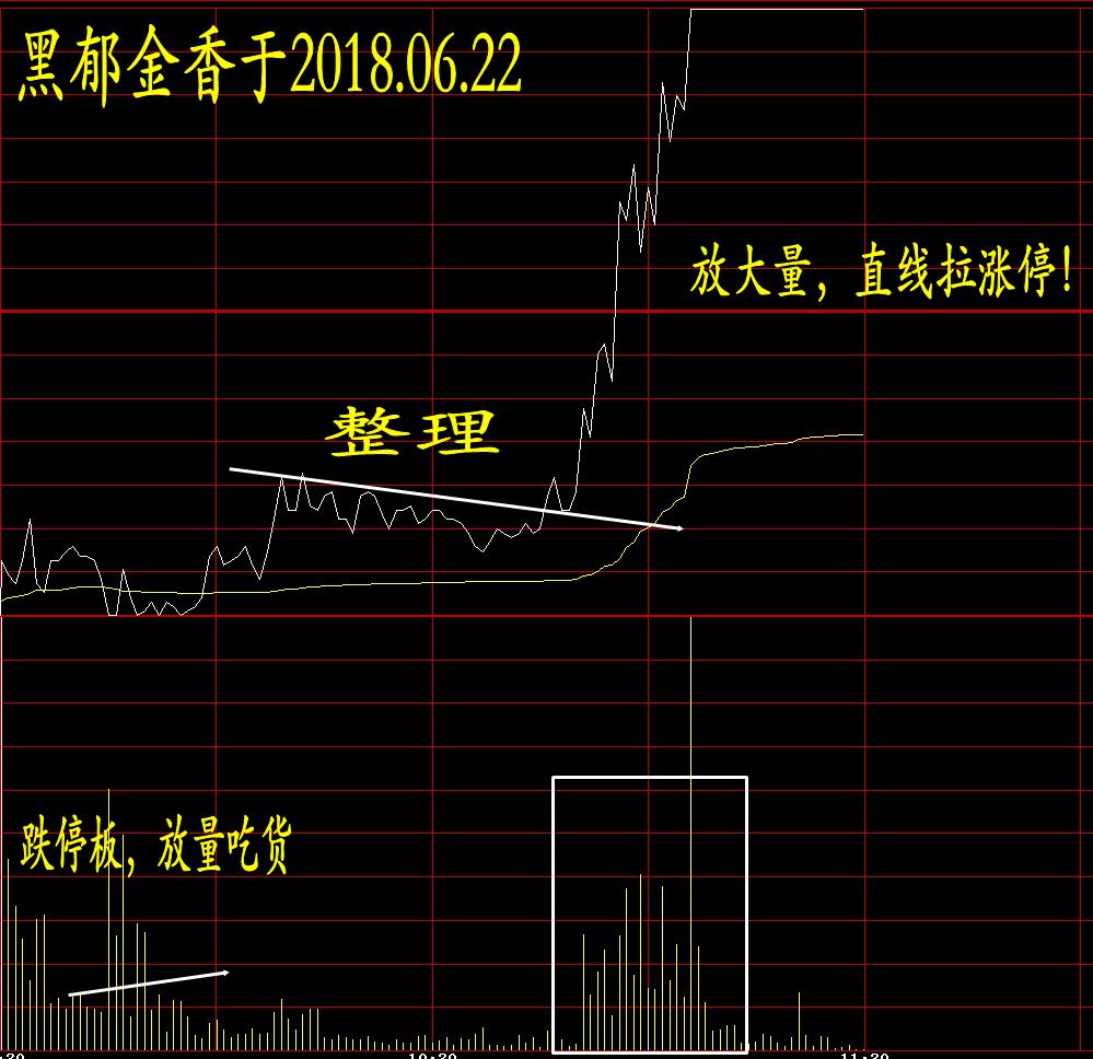 黑郁金香:一定境界的投机预案_图1-2