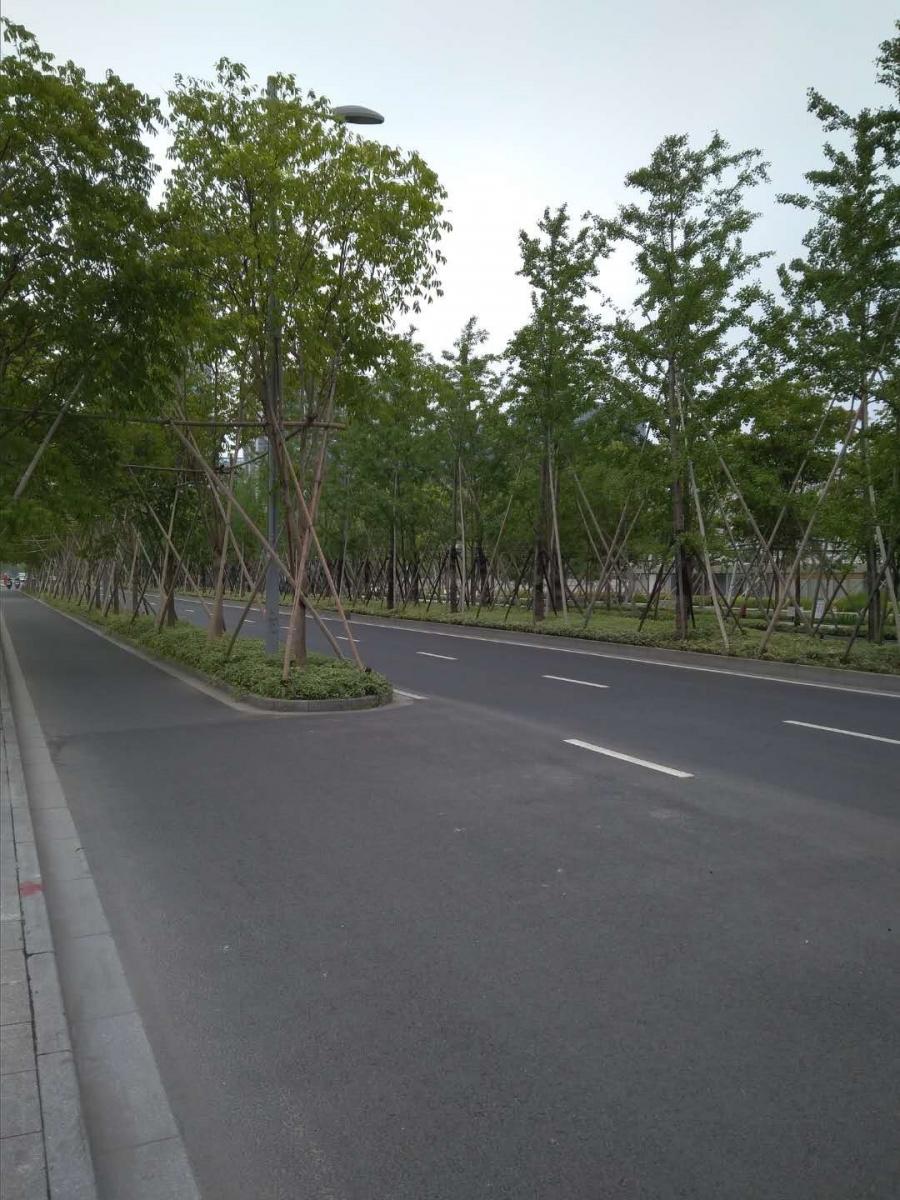 """市中心""""郊区化"""",漫步上海云锦路_图1-8"""